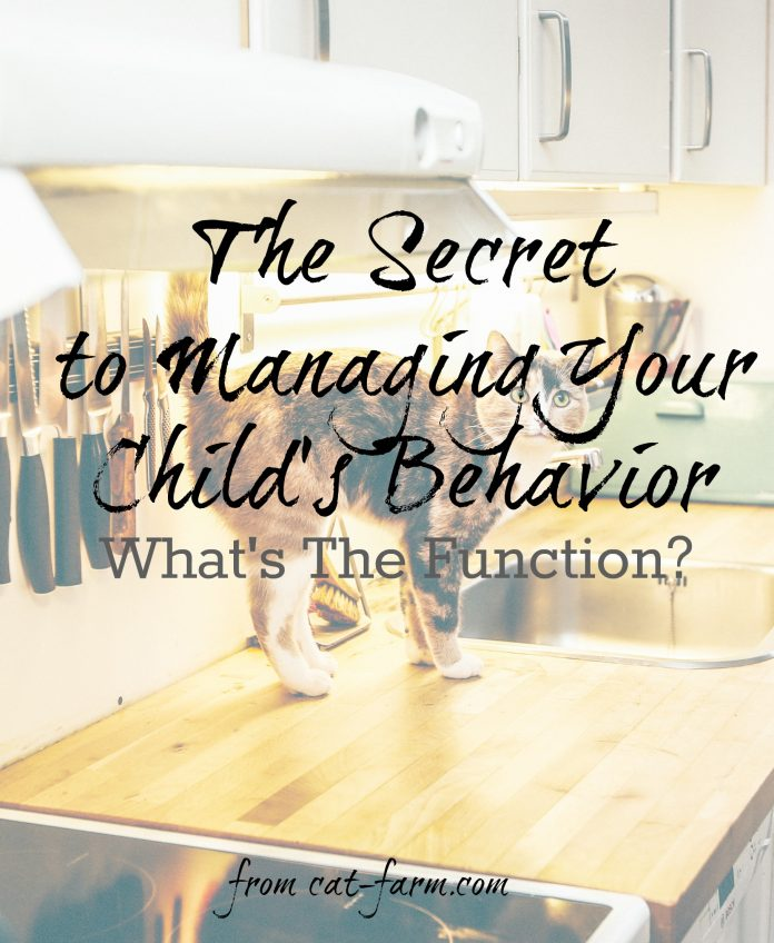 The Four Functions of Behavior